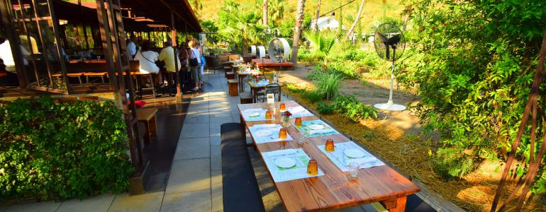 Dining at Flora Farms in Cabo